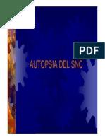 AUTOPSIA DEL SNC.pdf