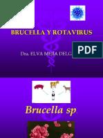 Brucella y Rotavirus