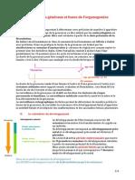 Mécanismes généraux et bases de l'organogenèse.docx