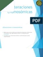 Alteraciones cromosómicas