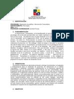 Programa Dip Interv Comunitaria 2010 (2) - u de Chile