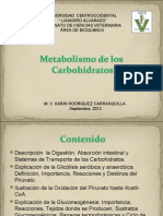 metabolismo cbh