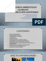 Problemas Globales (Parcial)