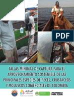 Tallas mínimas de captura de las principales especies de peces comerciales de Colombia-2013