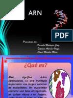 ARN (1)