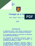 05 - Fisiología de la neurona