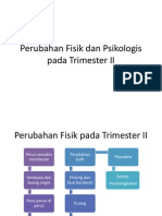 Dokter Yandi Trimester II