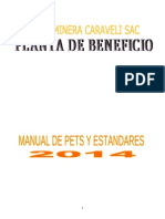 Manual de Procedimientos y Estandares 2014