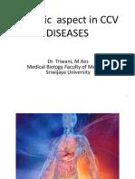 Genetic Aspect in CCV