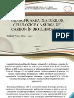 VALORIFICAREA DEŞEURILOR CELULOZICE CA SURSĂ DE CARBON ÎN BIOTEHNOLOGIE