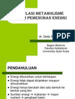 Regulasi Metabolisme Dalam Pemenuhan Energi