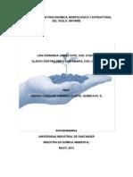 Informe Laboratorio de Suelos 2013 (1)