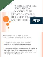 LOS PRINCIPIOS DE LA EVOLUCIÓN BIOLÓGICA Y SU