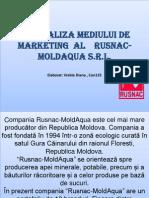 Analiza Mediului de Marketing Al Rusnac-moldaqua Srl.[Conspecte.md]