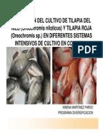 Cultivo_Tilapias