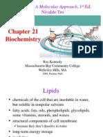 Chem chapter21 LEC