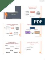 1- Alterações do desenvolvimento celular - 2014