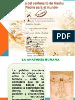 planimetria-121116093159-phpapp01