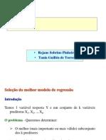 5 Estrategia Modelagem Reg Multipla 2005