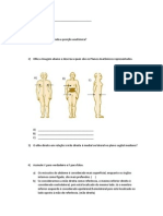 Prova Anatomia