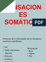 SENSACIONES SOMATICAS