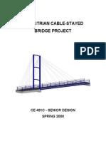 CE491C Report