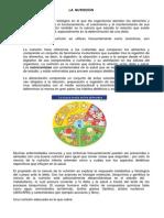Lectura No 08 - La Nutricion Dentro Del Area de Educacion Fisica