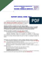 Raport Anual CSSM