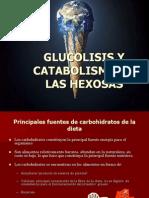 glucolisis2