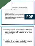 Fitohormonas- Clase 4