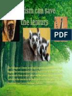 Cristian Carrera Lemur