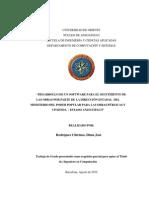 15-TESISIDC010R72 (1)
