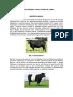 Principales Razas Productoras de Carne