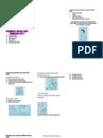 Leaflet ISPA (Autosaved)
