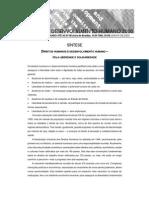 Sintese_RDH-2000 - Direitos Humanos