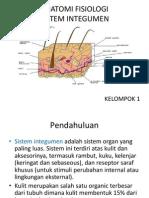 Anatomi Fisiologi Sistem Integumen