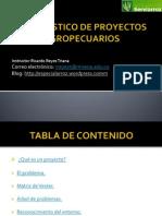 DIAGNÓSTICO DE PROYECTOS AGROPECUARIOS