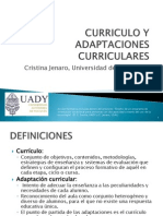 currculo y adaptaciones curriculares