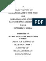 Amul Internship Project