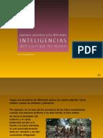 9 Ancestros e Inteligencias