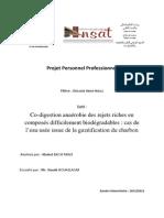 PPP 2012 - Co-digestion anaérobie (étude de cas)