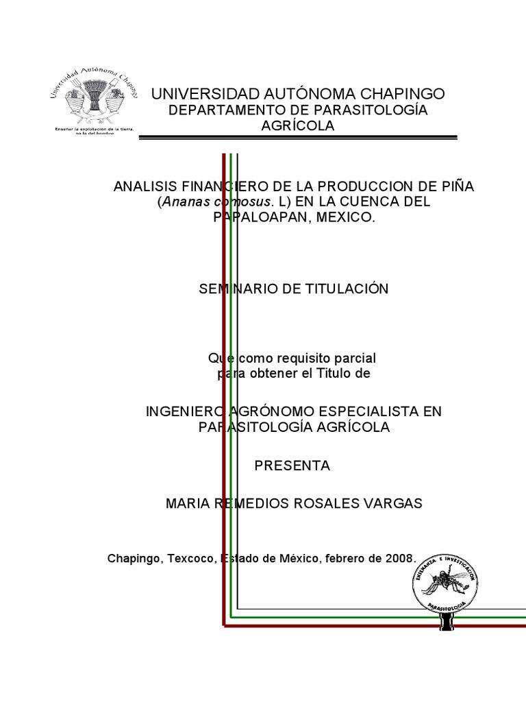 tesis-Piña