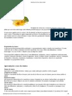 Benefícios da Arnica _ Busca Saúde
