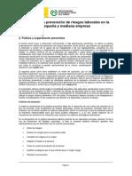Www.insht.es InshtWeb Contenidos Documentacion TextosOnline Guias Ev Riesgos Gestion Prevencion PYMES 2 Politica Organizacion Preventiva