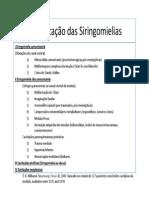 Classificacao Das Siringomielias