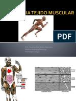 Histologia Tejido Muscular USMP