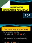 FISIOPATOLOGIA  CIRCULACION  PULMONAR