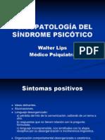 Psicopatologia Del Sndrome Psictico 2008 1220408509096927 9