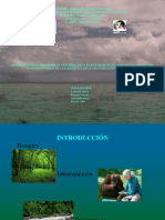 Proyecto+Rio+Tocuyo.ppt