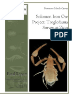 Solomon Iron Ore Project